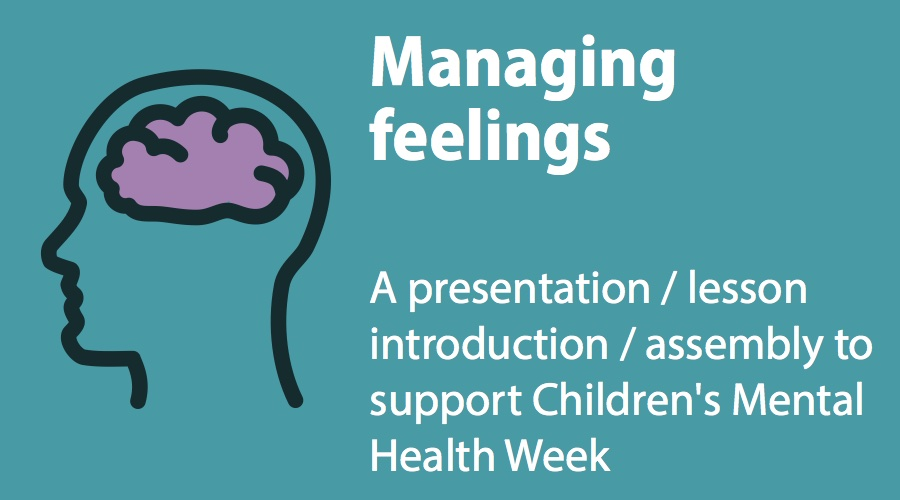Managing Feelings Presentation image